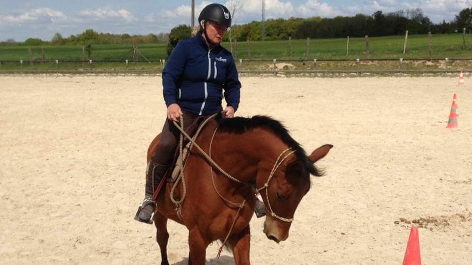 équitation éthologique dordogne (3)